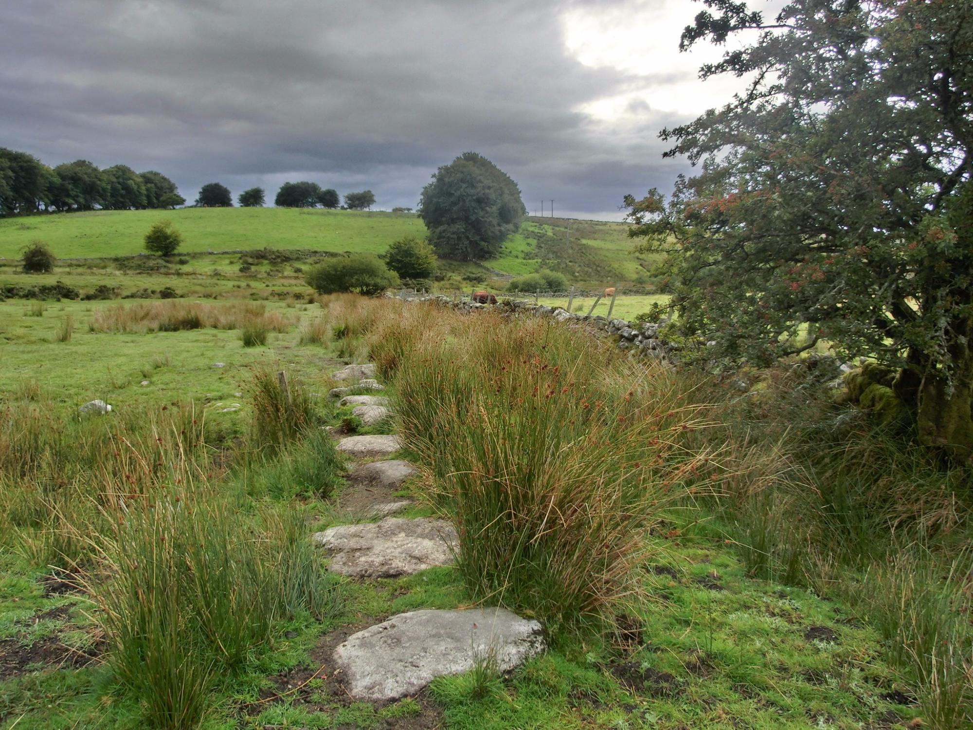 dartmoor-200587